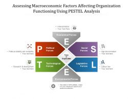 Assessing Macroeconomic Factors Affecting Organisation Functioning Using PESTEL Analysis