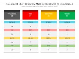 Assessment Chart Exhibiting Multiple Risk Faced By Organization