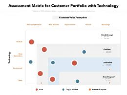 Assessment Matrix For Customer Portfolio With Technology