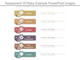assessment_of_risks_example_powerpoint_images_Slide01