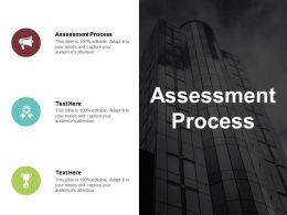 Assessment Process Ppt Powerpoint Presentation File Pictures Cpb
