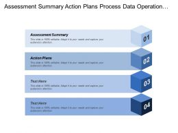 Assessment Summary Action Plans Process Data Operational Goals