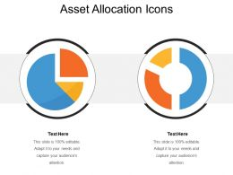 Asset Allocation Icons