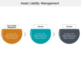 Asset Liability Management Ppt Powerpoint Presentation File Graphics Cpb