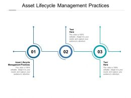 Asset Lifecycle Management Practices Ppt Powerpoint Presentation Ideas Model Cpb