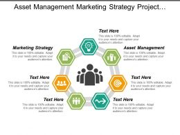 Asset Management Marketing Strategy Project Management Asset Management Cpb