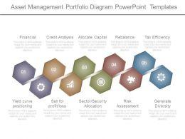 Asset Management Portfolio Diagram Powerpoint Templates