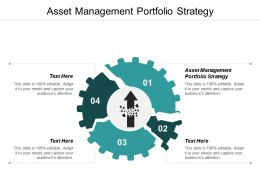 Asset Management Portfolio Strategy Ppt Powerpoint Presentation File Structure Cpb