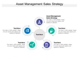 Asset Management Sales Strategy Ppt Powerpoint Presentation Show Graphics Cpb