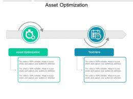 Asset Optimization Ppt Powerpoint Presentation Infographics Format Cpb