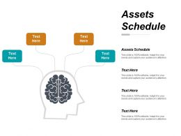 Assets Schedule Ppt Powerpoint Presentation Slides Graphics Cpb