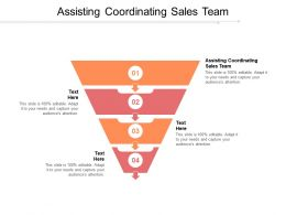 Assisting Coordinating Sales Team Ppt Powerpoint Presentation Infographic Template Clipart Images Cpb
