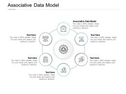 Associative Data Model Ppt Powerpoint Presentation Gallery Display Cpb
