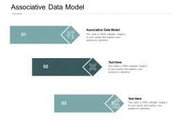 Associative Data Model Ppt Powerpoint Presentation Styles Example Cpb