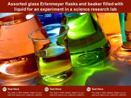 Assorted Glass Erlenmeyer Flasks Beaker Filled With Liquid For An Experiment In A Science Research Lab