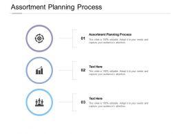 Assortment Planning Process Ppt Powerpoint Presentation Portfolio Portrait Cpb