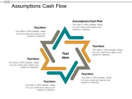 Assumptions Cash Flow Ppt Powerpoint Presentation Gallery Themes Cpb