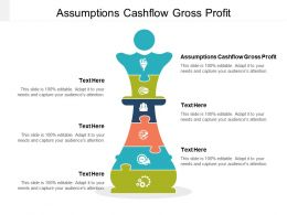 Assumptions Cashflow Gross Profit Ppt Powerpoint Presentation Diagram Images Cpb