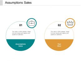 Assumptions Sales Ppt Powerpoint Presentation Gallery Deck Cpb