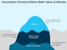 Assumptions Showing Artifacts Belief Values And Attitudes