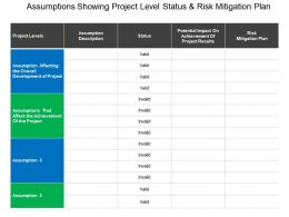 Assumptions Showing Project Level Status And Risk Mitigation Plan