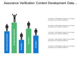 Assurance Verification Content Development Data Analysis Project Management
