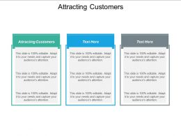 Attracting Customers Ppt Powerpoint Presentation Show Brochure Cpb