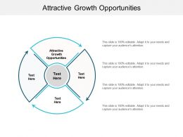 Attractive Growth Opportunities Ppt Powerpoint Presentation File Example Cpb