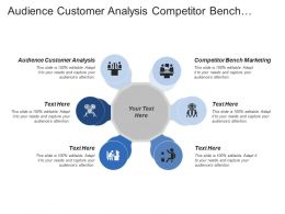 Audience Customer Analysis Competitor Bench Marketing Online Partner Analysis