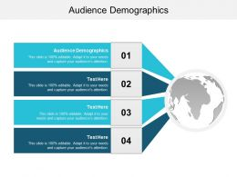Audience Demographics Ppt Powerpoint Presentation File Gallery Cpb