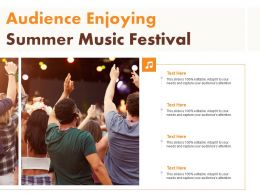 Audience Enjoying Summer Music Festival