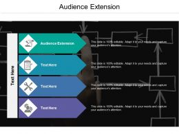 Audience Extension Ppt Powerpoint Presentation Pictures Design Ideas Cpb