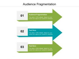 Audience Fragmentation Ppt Powerpoint Presentation Styles Sample Cpb