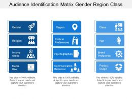 Audience Identification Matrix Gender Region Class