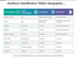 Audience Identification Matrix Geographic Behavioral Psychographic