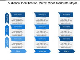 Audience Identification Matrix Minor Moderate Major