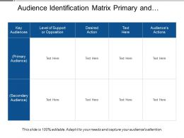 Audience Identification Matrix Primary And Secondary Audience