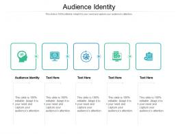 Audience Identity Ppt Powerpoint Presentation Outline Graphic Tips Cpb