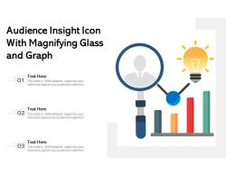 Audience Insight Icon With Magnifying Glass And Graph