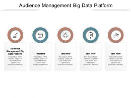 Audience Management Big Data Platform Ppt Powerpoint Presentation Summary Graphics Pictures Cpb