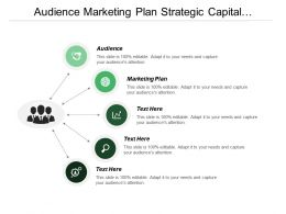 Audience Marketing Plan Strategic Capital Development Operational Model