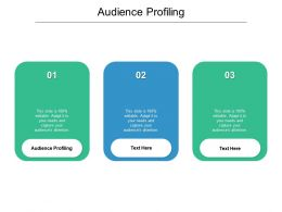 Audience Profiling Ppt Powerpoint Presentation Model Icon Cpb