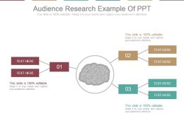 audience_research_example_of_ppt_Slide01