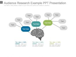 audience_research_example_ppt_presentation_Slide01