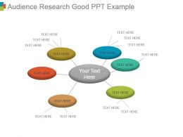 Audience Research Good Ppt Example