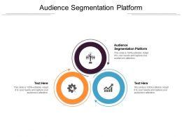 Audience Segmentation Platform Ppt Powerpoint Presentation Icon Sample Cpb