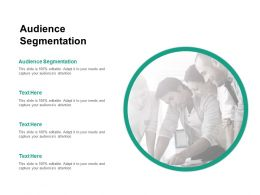 Audience Segmentation Ppt Powerpoint Presentation File Pictures Cpb