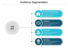 Audience Segmentation Ppt Powerpoint Presentation Gallery Example Topics Cpb