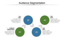 Audience Segmentation Ppt Powerpoint Presentation Model Background Images Cpb