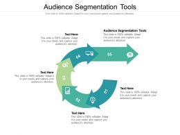 Audience Segmentation Tools Ppt Powerpoint Presentation Slides Maker Cpb